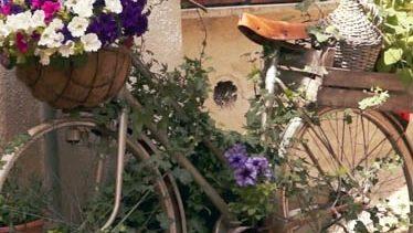 fiorile-2020-castelnuovo-di-farfa