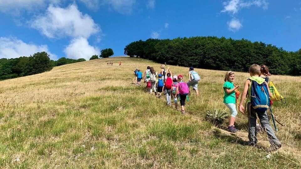 terminillo-passeggiate-per-i-bambini-nei-boschi-natura-flora-fauna-boods